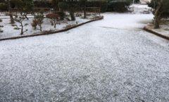 大津町も雪